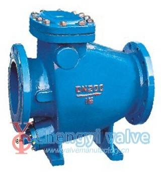 Tiny Drag Slow Shut Check Valve