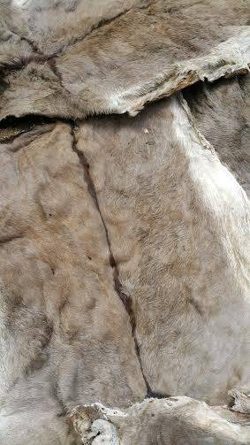 WET SALTED COW,DONKEY HIDES