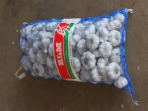 5.0cm-5.5cm normal white garlic