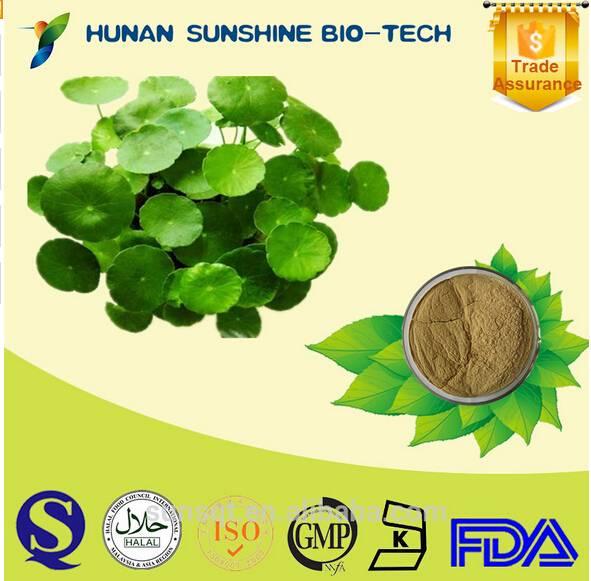 Centella Asiatica Extract, Gotu Kola Extract Powder, Asiaticoside 10%