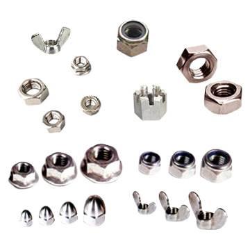Din6923 Flange Nut/ Stainless Steel NUT
