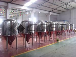 500L beer fermentation tank