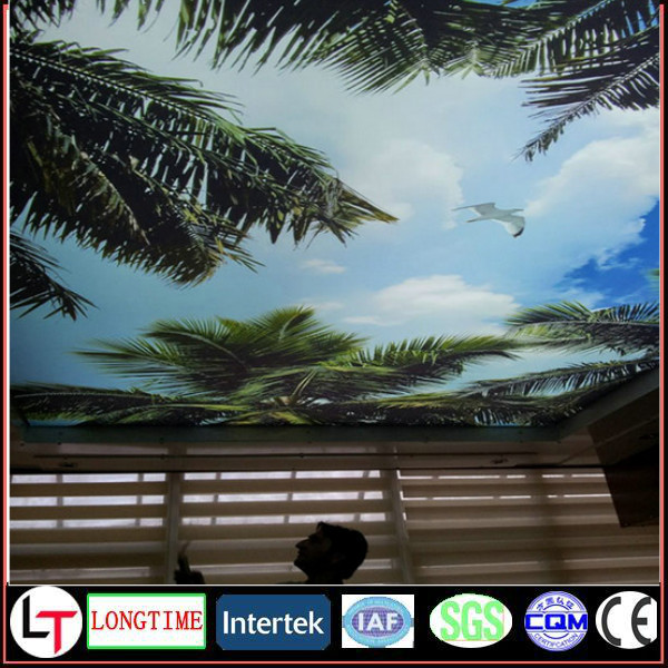 Hot Sale lack PVC Soft Stretch Ceiling Film