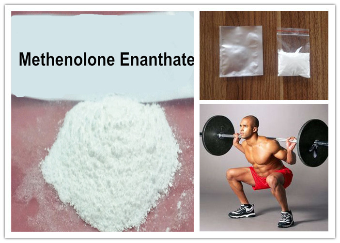 99% High Purity steroid Methenolone Enanthate Primobolan for Cutting Cycle and Muscl Building