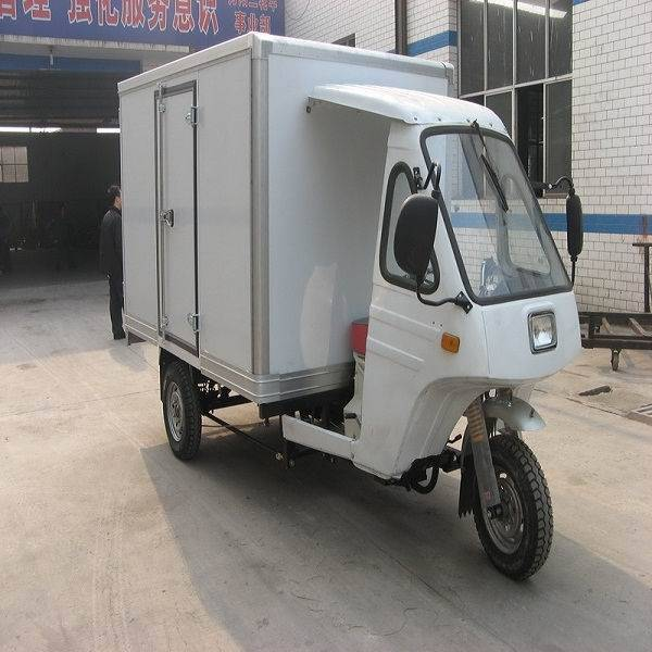 Closed Cargo Tricycle