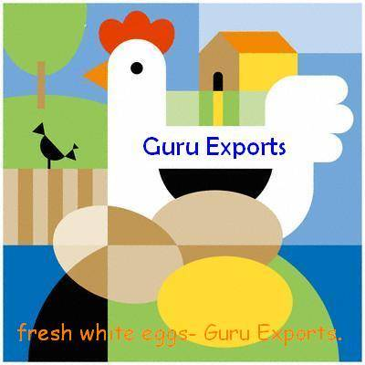 FRESH INDIAN WHITE & BROWN EGG EXPORTERS