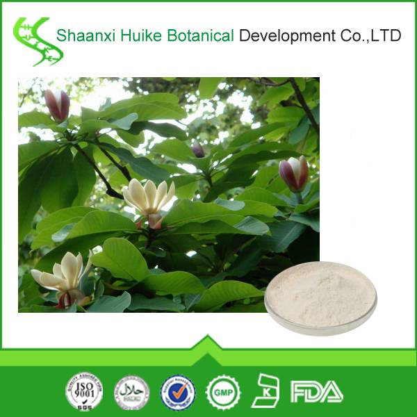 Mangnolia Officinalis Extracts/Mangnolia officinalis P.E.