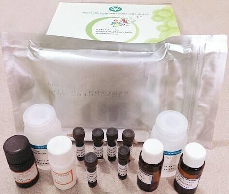 WYS028 Ethoxyquin ELISA Test Kit