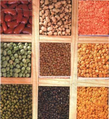 Pulses Beans Lentil