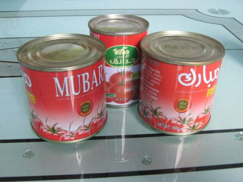 Hot sell canned tomato paste, tomato sauce, ketchup