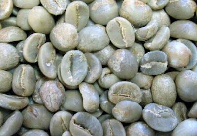 Robusta green bean coffee from lampung