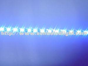 5050smd 60pcs/m blue for commercial decoration strip led light