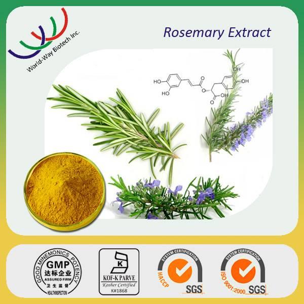 free sample GMP manufacturer large supplement antioxidant ursolic acid