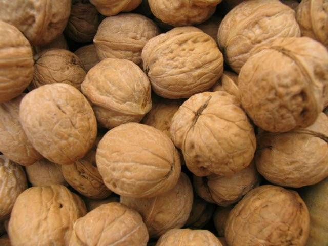 Walnuts inshell from South Africa, good price.