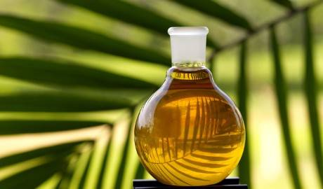 Palm Olein Oil Crude Palm Oil