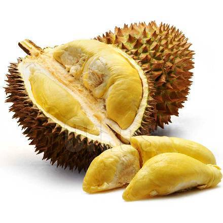 The natural durian in Vietnam