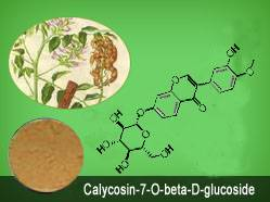 Calycosin-7-O-beta-D-glucoside CAS No.: 20633-67-4