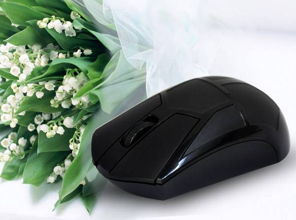 Laser 2.4G Optical Wireless Mouse with USB Mini Receiver