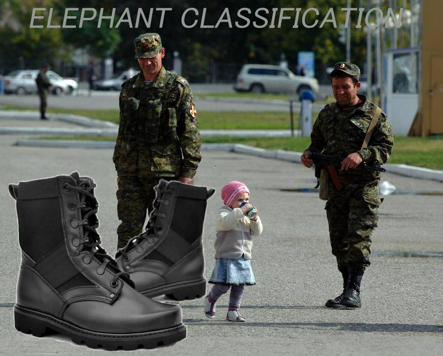 Selling ELEPHANT CLASSIFICATION POLICE & MILITARY FOOTWEAR SHOES