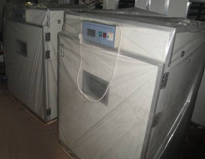 supply egg incubation incubator auto-incubator