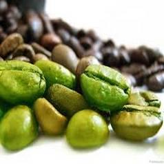 10%- 98% Green Coffee Bean Extract