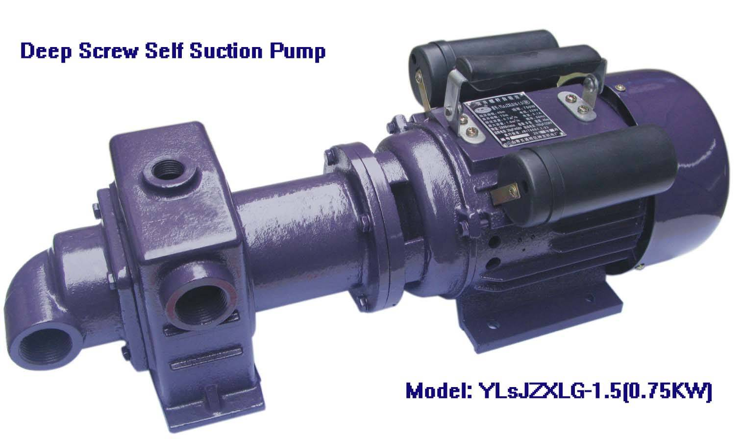 Electtic Deep Screw Pump-YLsJZXLG-1.5, 750W