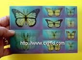 3D Card, Lenticular Card