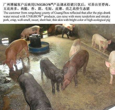 Livestock and Poultry Growth Promoting