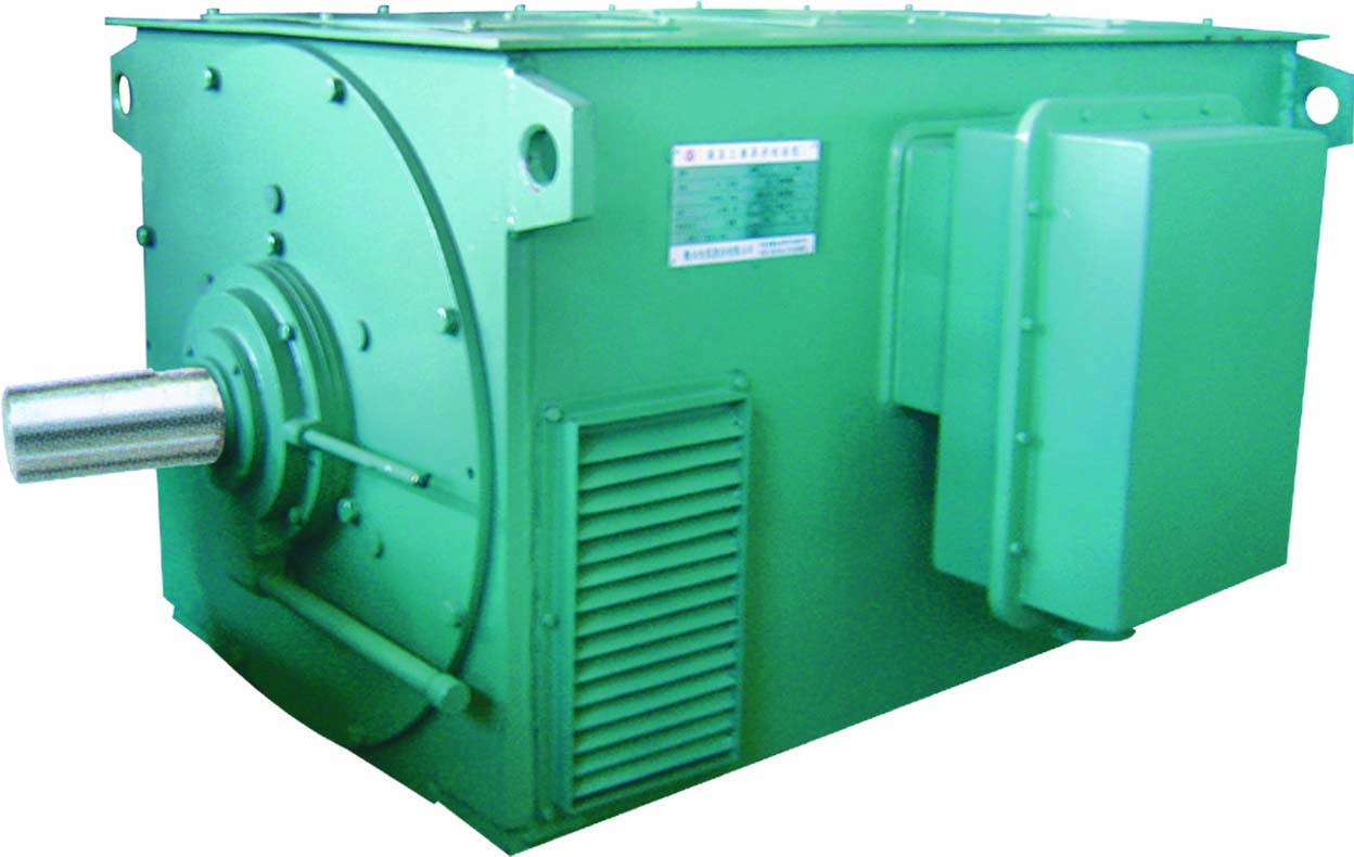High voltage three phase asynchronous AC Motor