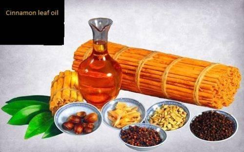 Cinnamon oils Bark oil and leaf oil