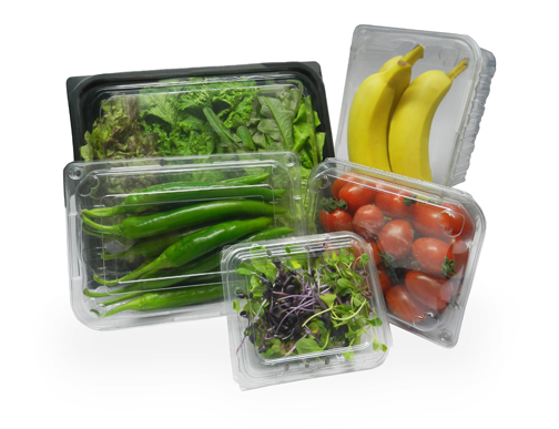 High Quality ViVifresh Bio-fresh food Tray - Cherry tomato L Size (PET, pp tray for food packaging)