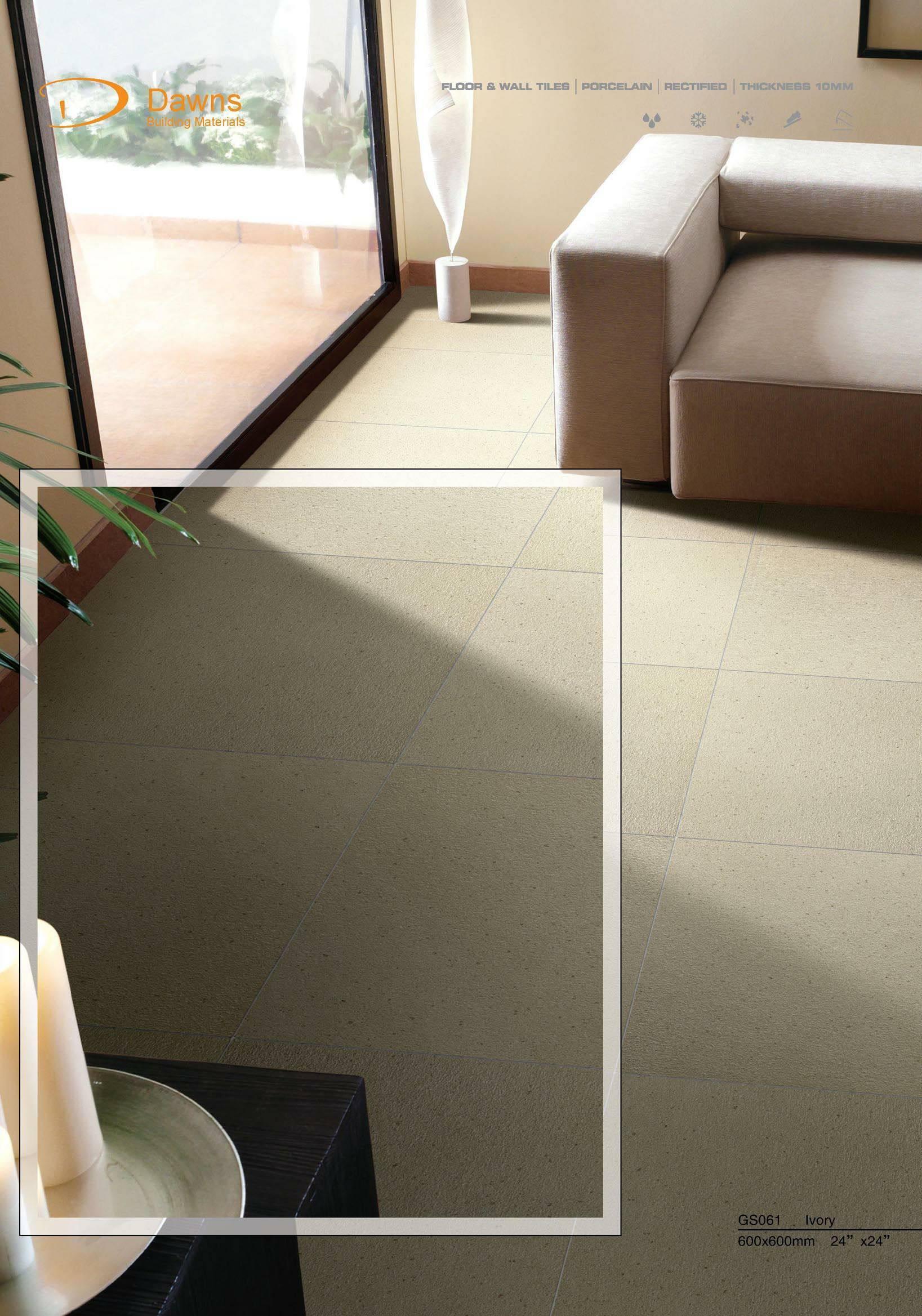 Porcelain Tiles Dinasour 600x600mm