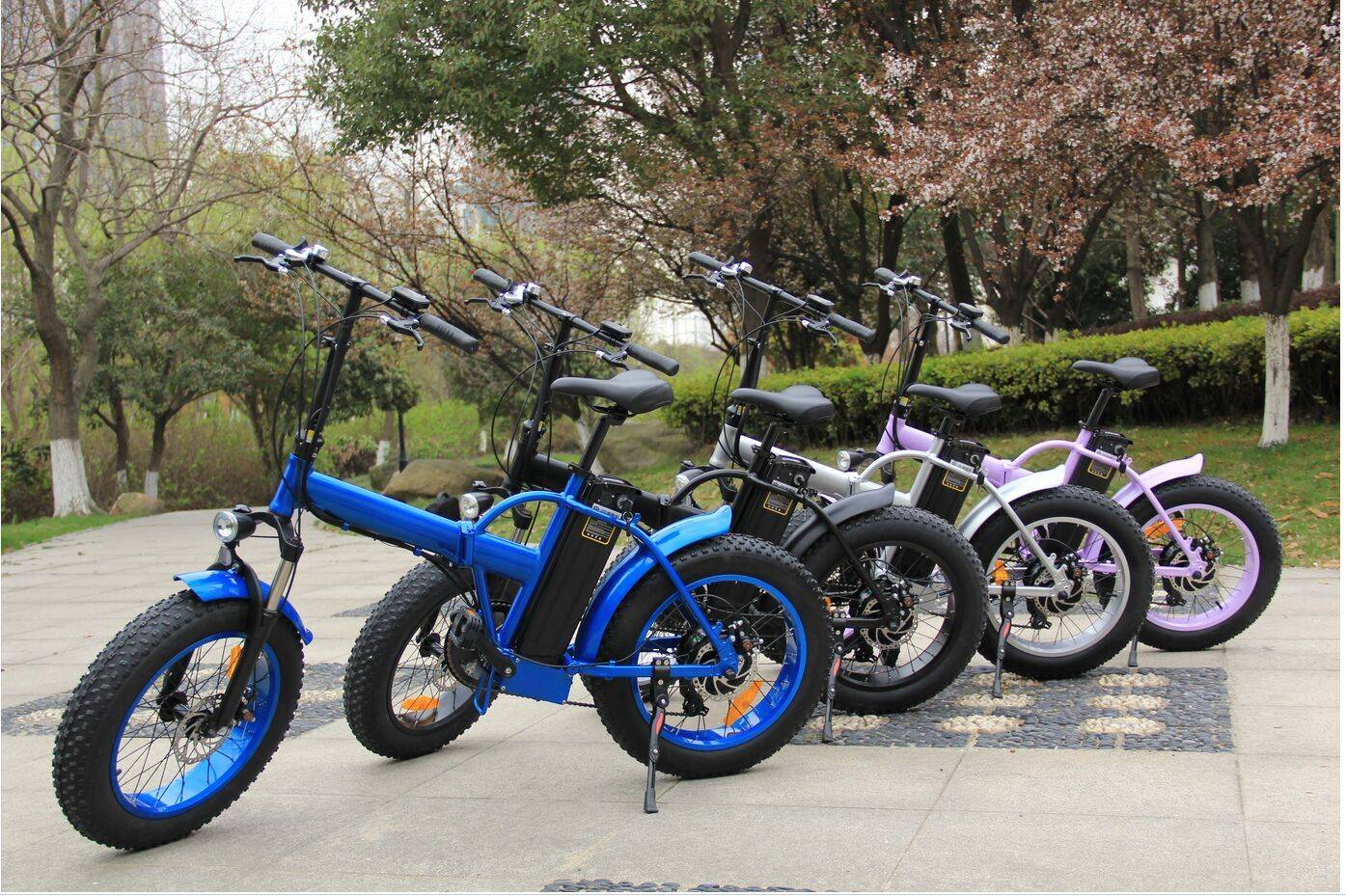 204.0 mini fat tire foldable electric bicycle