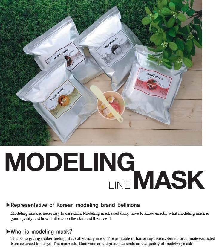 Modeling Mask Line