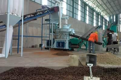 Biomass Pellet Machine for Thailand Market