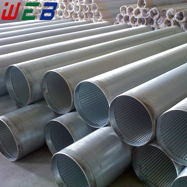 Stainless Steel Wedge Wire Filter Pipe Screen (ISO9001:2008 Factory)