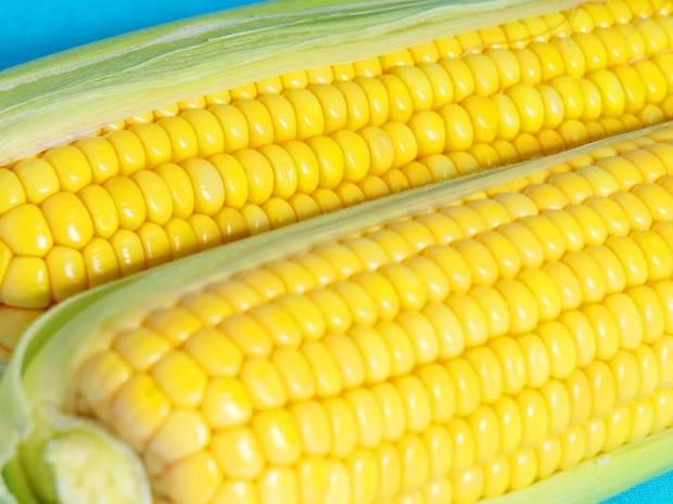 SELL Yellow Corn # 2 - LATAM