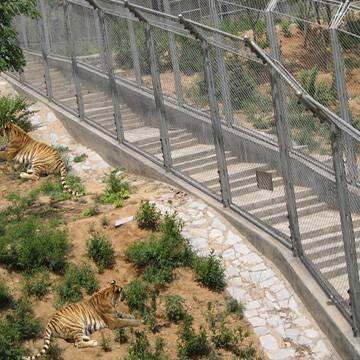 zoo animal enclosure,zoo mesh,rope mesh bird netting