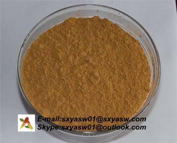 Natural Belladonna Extract 0.7% 1% Hyoscyamine