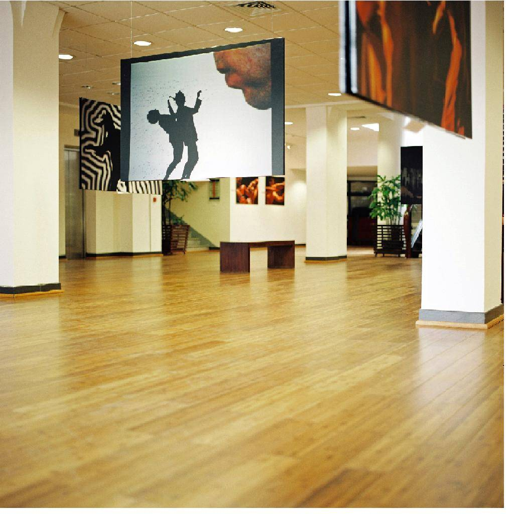 Engineer bamboo Flooring 2 layer