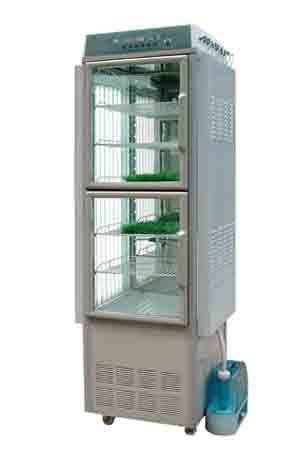 Fungus mycete mucedine micro organism germ Artificial climate growth cabinet chamber