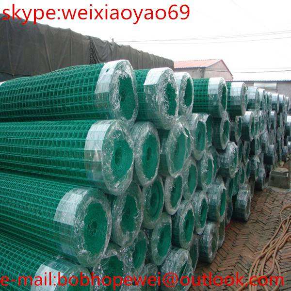 Euro fence netting/holland wire mesh with reasonable price in store(Professional Manufacturer)