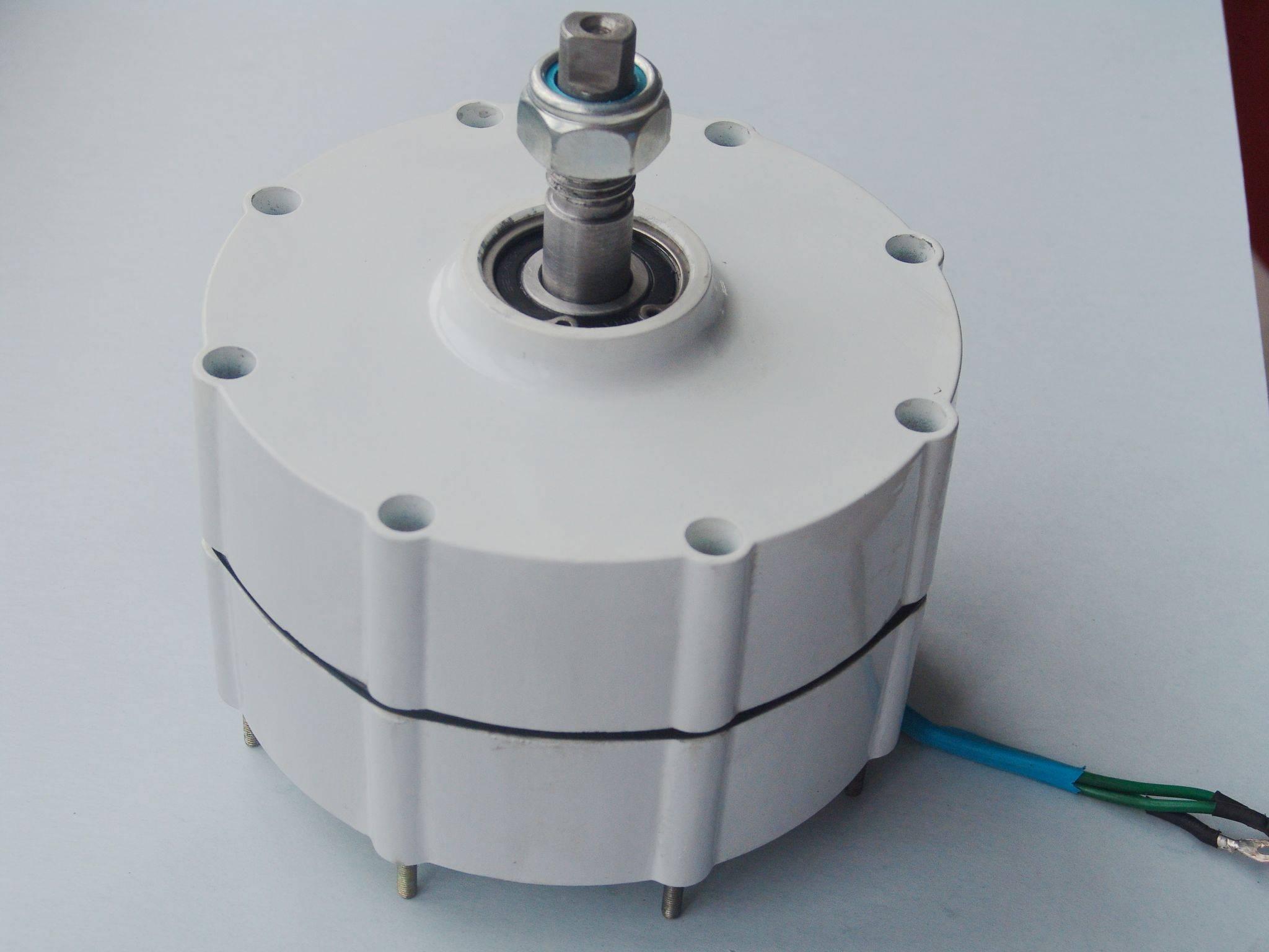 700w ac rare earth permanent magnet generator
