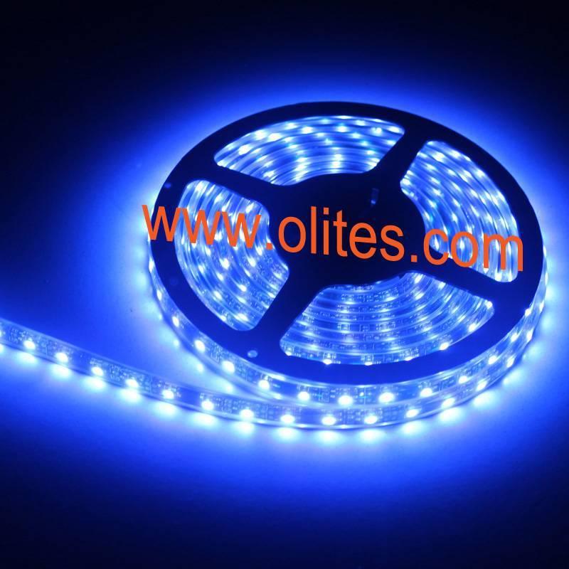12V/24V 3528 SMD LED Tape Light