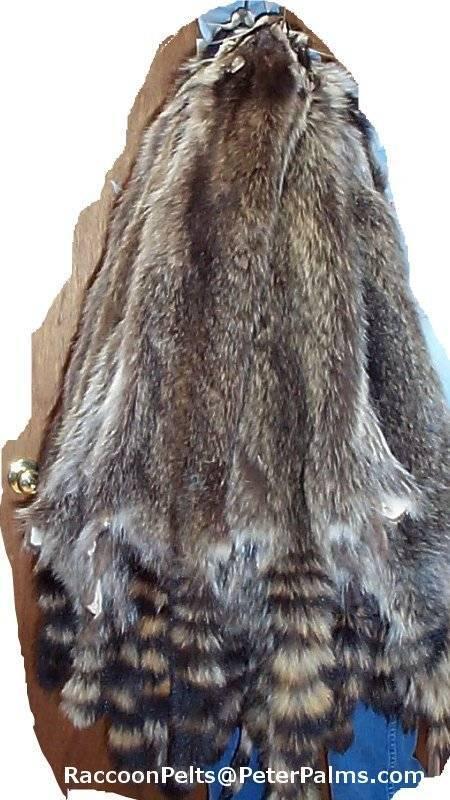 Wild American RaccoonTanned Fur pelts