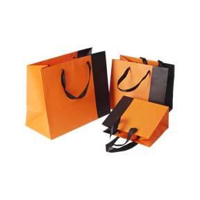 Fashion Shopping Bags Factory