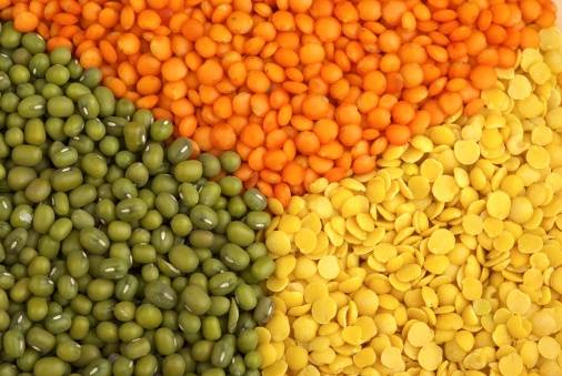 Lentils and Pulses for sale