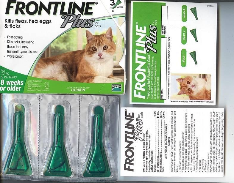 Frontline Plus for Cat