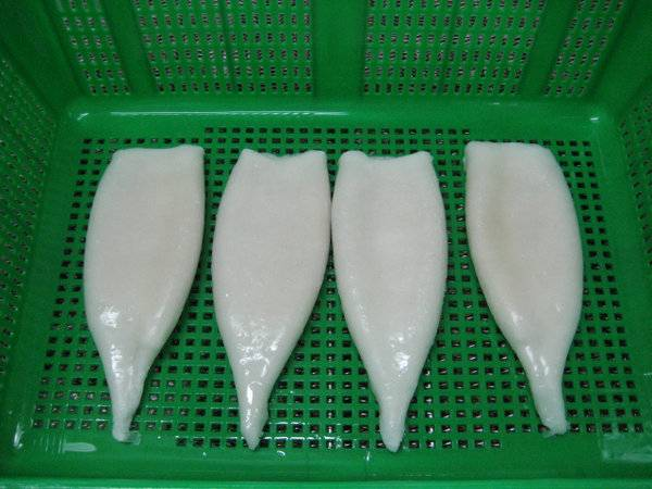 Sell frozen squid tube U3 u5 u7 u10 u15