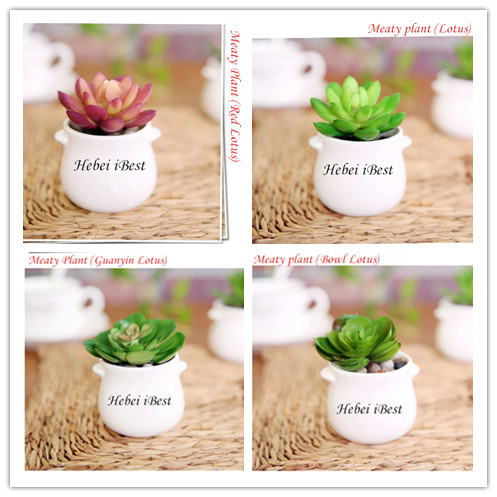 Sell Mini Artifical Succulents in round pot